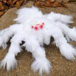 ARAÑA. albina